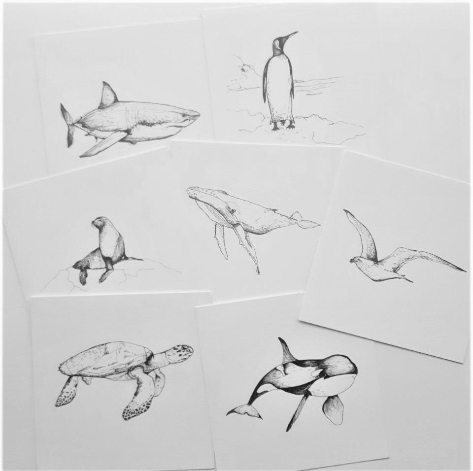 Set kaarten zeedieren
